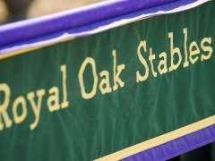 Royal Oak Stables: January 2016 News