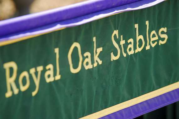 Royal Oak Stables: January 2016 News